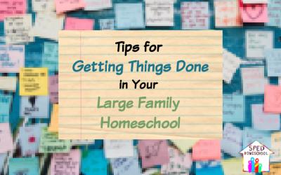 large family homeschool blog image