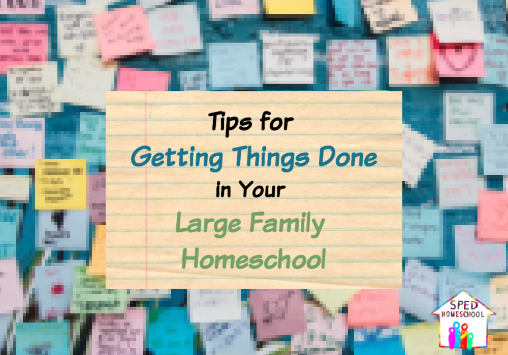 large family homeschool blog image